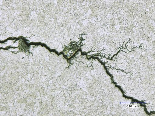 """Branched crack with """"lightning bolt"""" appearance may indicate stress corrosion cracking."""
